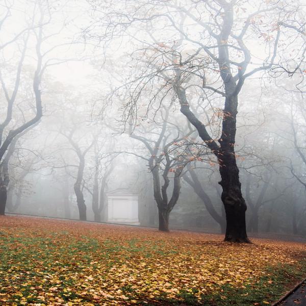 Фотовыставка Чехия Х - Открытая Школа Фотографии и Fujifilm X